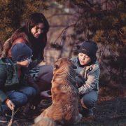 4 Domaines dont les familles devraient s'occuper à l'automne