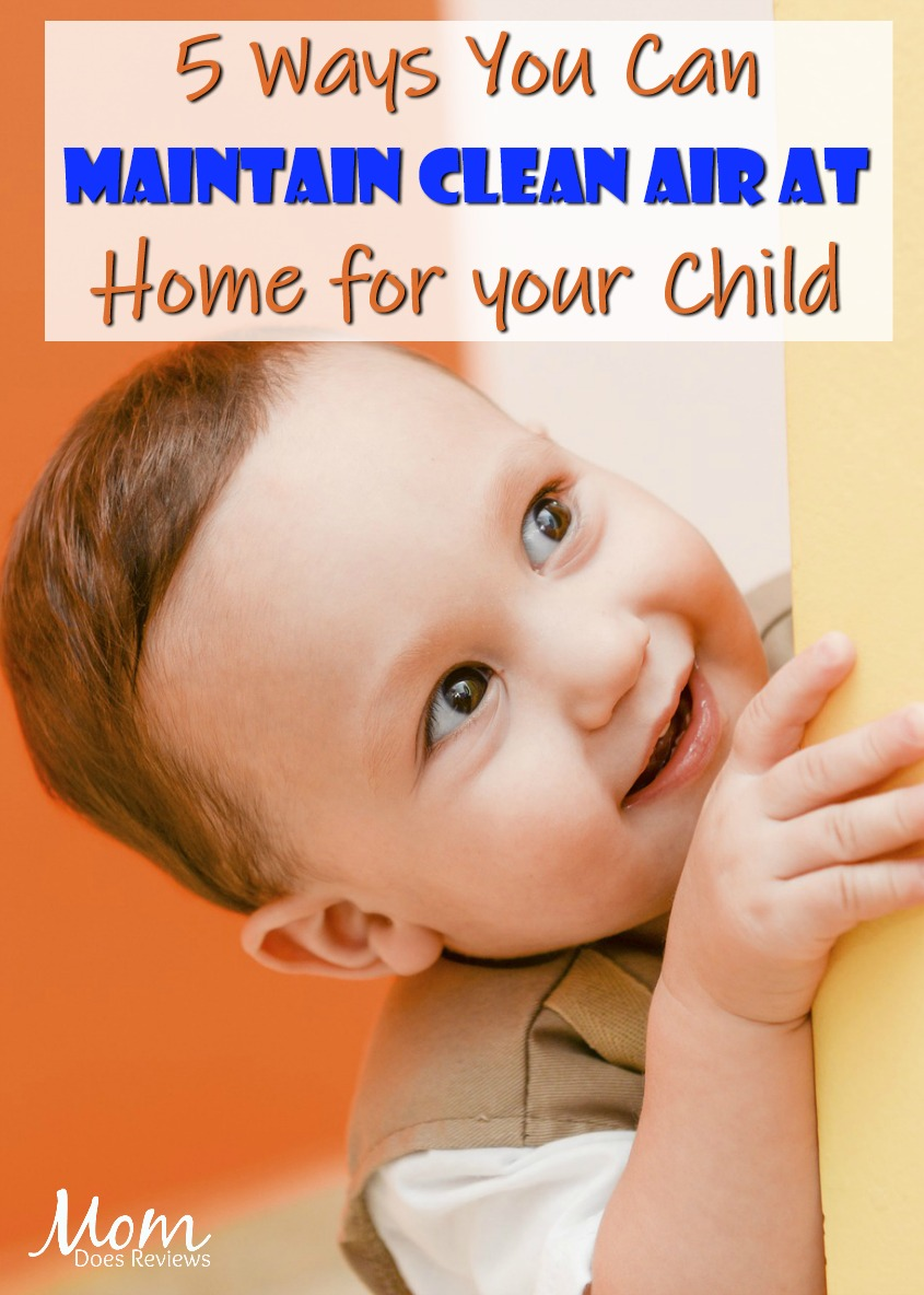 Raising an Asthmatic Child? 5 Ways You Can Maintain Clean Air at Home
