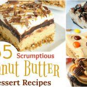 55 délicieuses recettes de desserts au beurre d'arachide qui vous feront baver {Partie 1}.