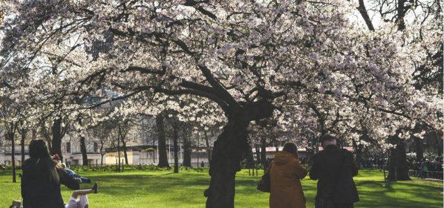 A l'aise au printemps : 4 façons de garder la famille heureuse pendant les périodes de changement de temps