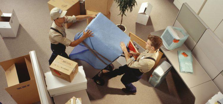 Importance des services professionnels de réinstallation
