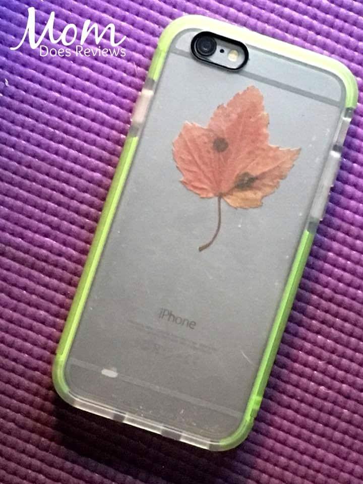 contact-backwith-leaf